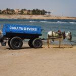 Cylinder Transport